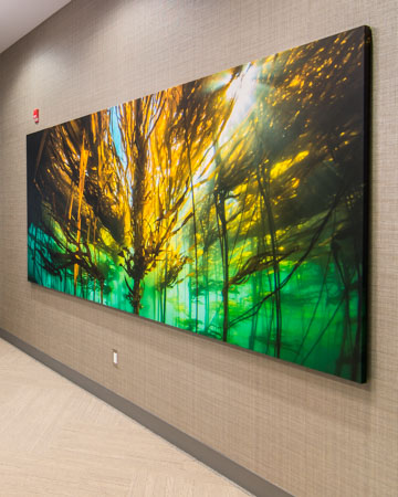 Large stretched canvas image