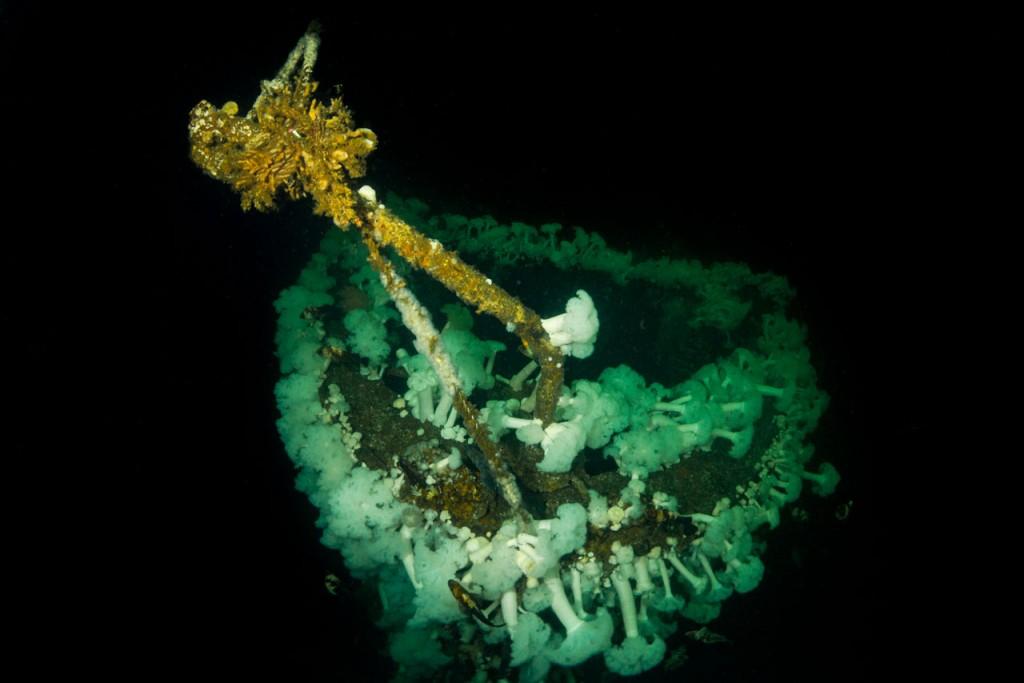 capilano shipwreck bow