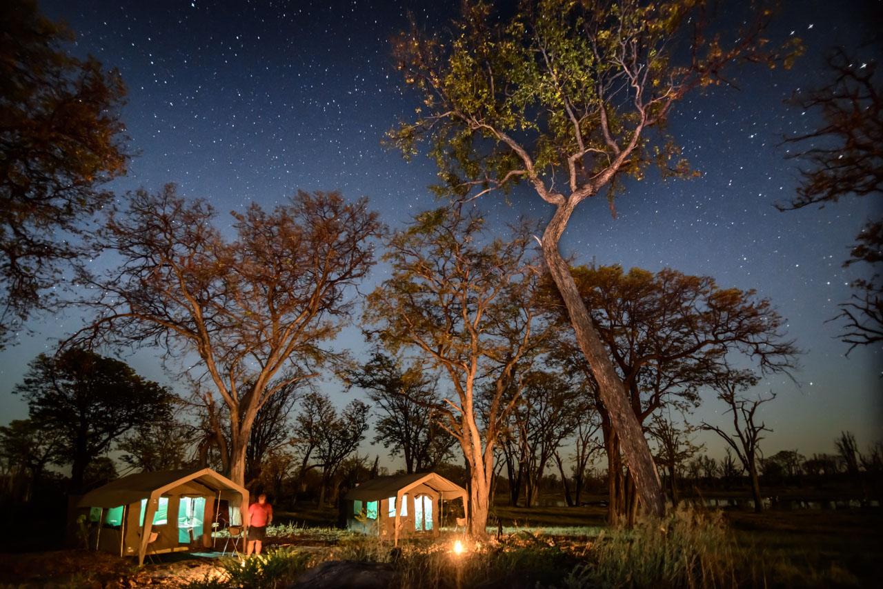 camp moremi with letaka safaris