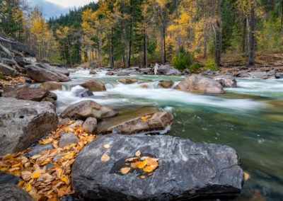 Autumn along the Cayoosh Creek