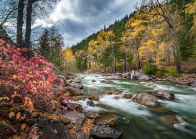 Dramatic Fall colours on Cayoosh Creek, BC