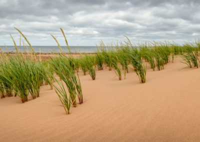Endless sand dunes on Prince Edward Island.