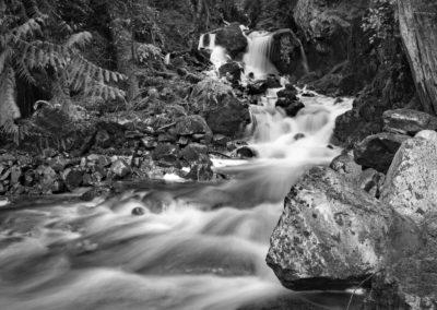Strathcona park waterfall