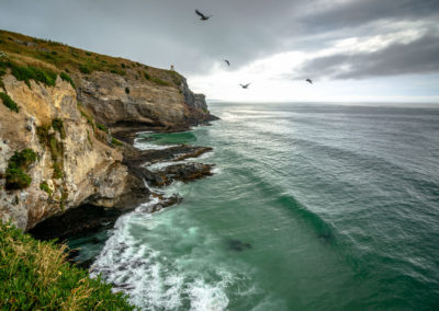 Tairoa Heads, Otago Peninsula, New Zealand