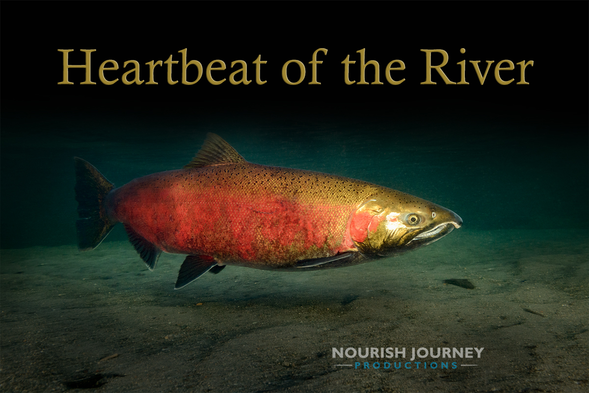 Heartbeat of the River movie