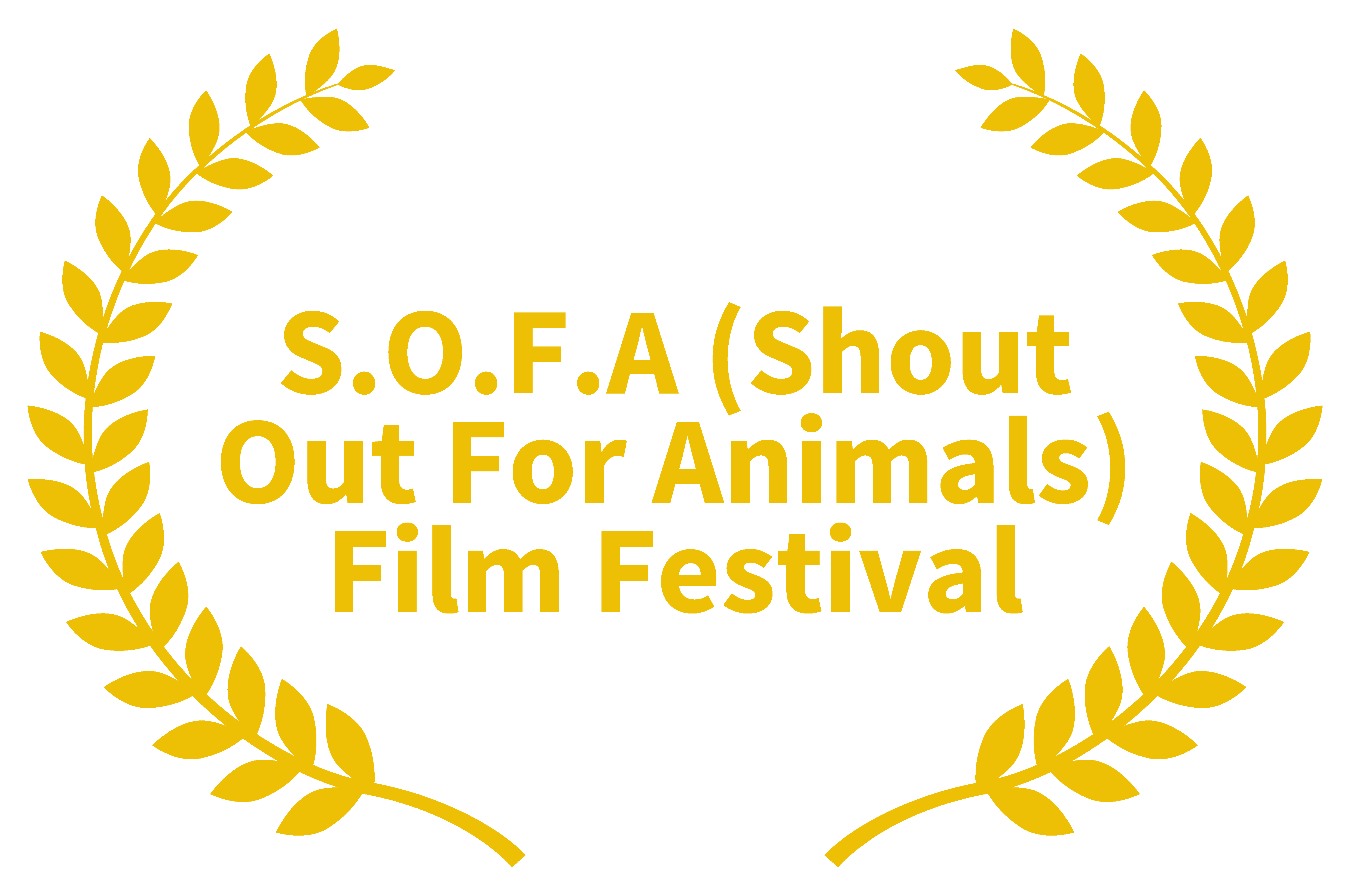 S.O.F.A  film festival award for Heartbeat of the River