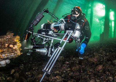 Laowa Probe lens on Underwater slider rig