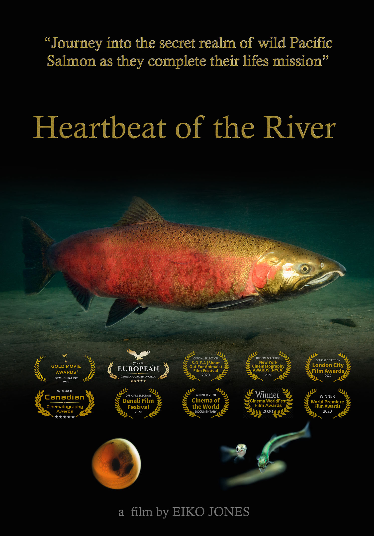 Heartbeat of the river movie poster